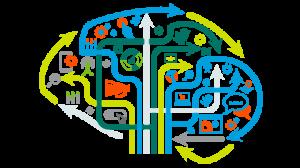 هوش تجاری سازمان